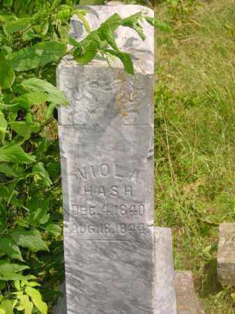 HASH, VIOLA (CLOSEUP) - Washington County, Arkansas | VIOLA (CLOSEUP) HASH - Arkansas Gravestone Photos
