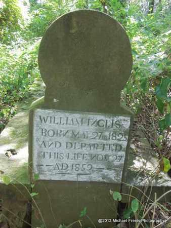 INGLIS, WILLIAM - Washington County, Arkansas   WILLIAM INGLIS - Arkansas Gravestone Photos