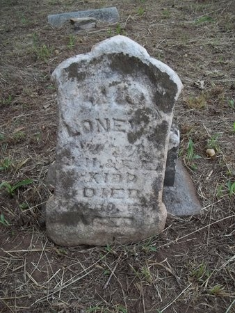 KIDD, LONEY P - Washington County, Arkansas | LONEY P KIDD - Arkansas Gravestone Photos