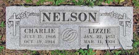 NELSON, LIZZIE - Washington County, Arkansas   LIZZIE NELSON - Arkansas Gravestone Photos