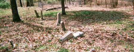 *OVERVIEW #2,  - Washington County, Arkansas |  *OVERVIEW #2 - Arkansas Gravestone Photos