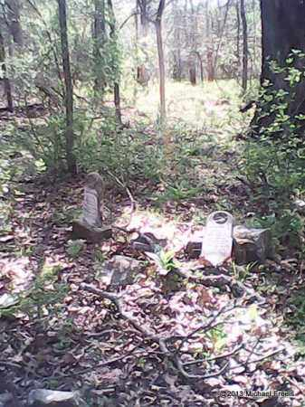 *DYER CEMETERY OVERVIEW,  - Washington County, Arkansas |  *DYER CEMETERY OVERVIEW - Arkansas Gravestone Photos
