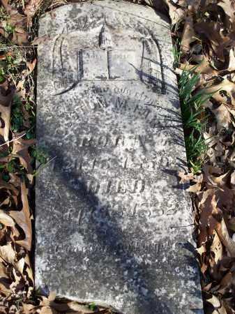 PARKS, HOUSTON M - Washington County, Arkansas | HOUSTON M PARKS - Arkansas Gravestone Photos