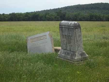 *PEDEN CEMETERY OVERVIEW,  - Washington County, Arkansas    *PEDEN CEMETERY OVERVIEW - Arkansas Gravestone Photos