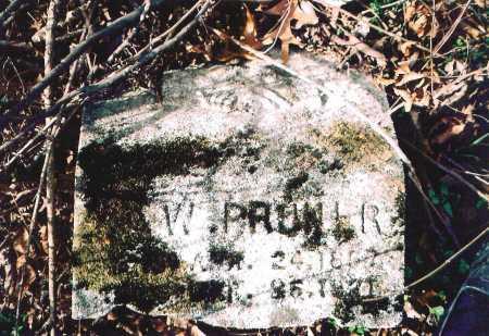 PRUNER, ?. W. - Washington County, Arkansas   ?. W. PRUNER - Arkansas Gravestone Photos