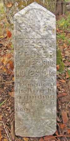 PRUNER, JESSIA - Washington County, Arkansas | JESSIA PRUNER - Arkansas Gravestone Photos