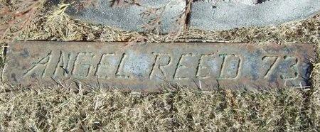 REED, ANGEL - Washington County, Arkansas   ANGEL REED - Arkansas Gravestone Photos
