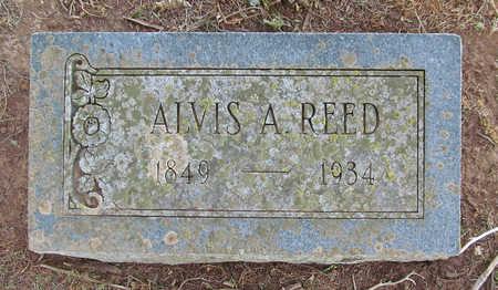 REED, ALVIS A - Washington County, Arkansas | ALVIS A REED - Arkansas Gravestone Photos