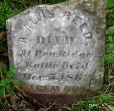 REED, ANTHONY ALVIS - Washington County, Arkansas | ANTHONY ALVIS REED - Arkansas Gravestone Photos