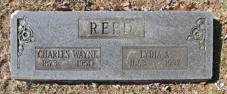 REED, CHARLES WAYNE - Washington County, Arkansas | CHARLES WAYNE REED - Arkansas Gravestone Photos