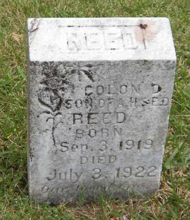 REED, COLON D - Washington County, Arkansas | COLON D REED - Arkansas Gravestone Photos