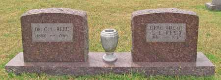REED, C L DR - Washington County, Arkansas   C L DR REED - Arkansas Gravestone Photos