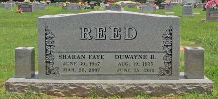 REED, SHARAN FAYE - Washington County, Arkansas | SHARAN FAYE REED - Arkansas Gravestone Photos