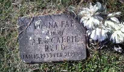 REED, DONNA FAE - Washington County, Arkansas | DONNA FAE REED - Arkansas Gravestone Photos