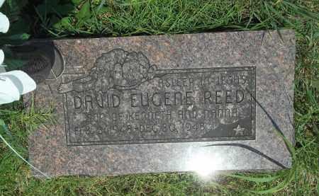 REED, DAVID EUGENE - Washington County, Arkansas | DAVID EUGENE REED - Arkansas Gravestone Photos