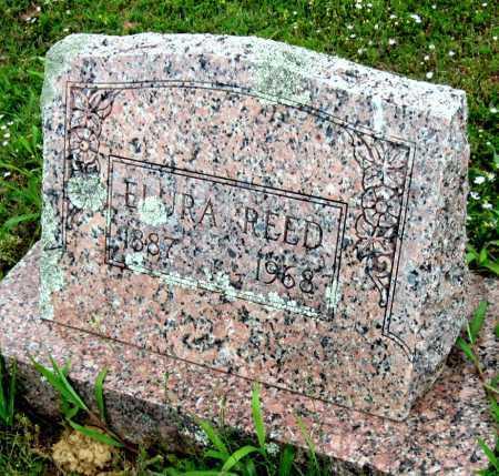 REED, ELURA - Washington County, Arkansas | ELURA REED - Arkansas Gravestone Photos