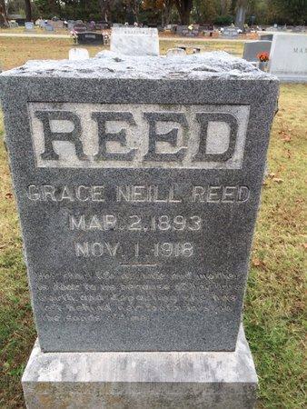 REED, GRACE NEILL - Washington County, Arkansas | GRACE NEILL REED - Arkansas Gravestone Photos