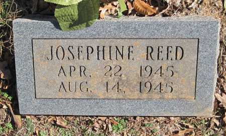 REED, JOSEPHINE - Washington County, Arkansas | JOSEPHINE REED - Arkansas Gravestone Photos