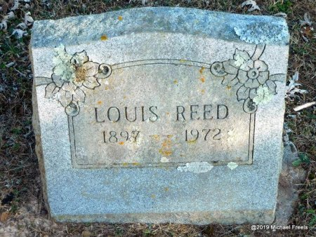 REED, LOUIS - Washington County, Arkansas | LOUIS REED - Arkansas Gravestone Photos