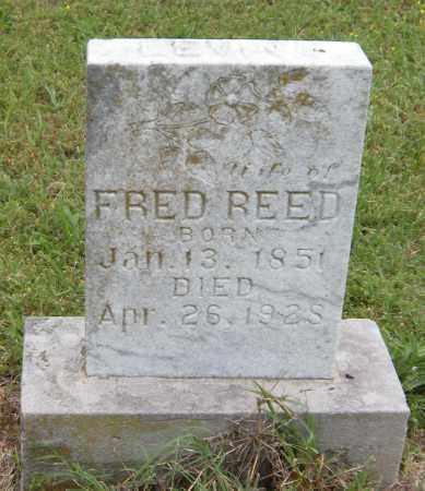 REED, LEVINA - Washington County, Arkansas | LEVINA REED - Arkansas Gravestone Photos