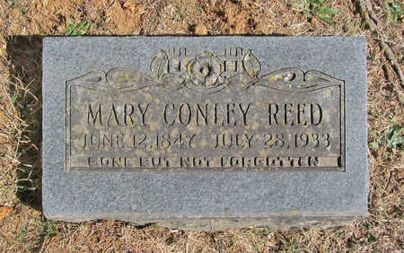 REED, MARY - Washington County, Arkansas | MARY REED - Arkansas Gravestone Photos