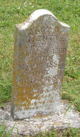REED, MARY B MENTY - Washington County, Arkansas | MARY B MENTY REED - Arkansas Gravestone Photos