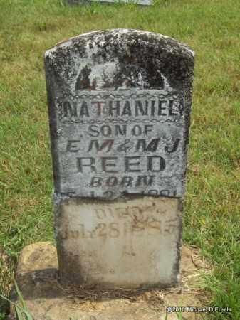 REED, NATHANIEL - Washington County, Arkansas | NATHANIEL REED - Arkansas Gravestone Photos