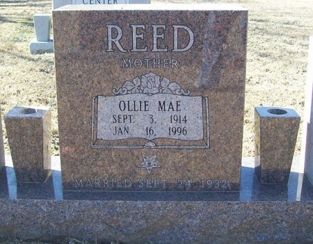 REED, OLLIE MAE - Washington County, Arkansas | OLLIE MAE REED - Arkansas Gravestone Photos