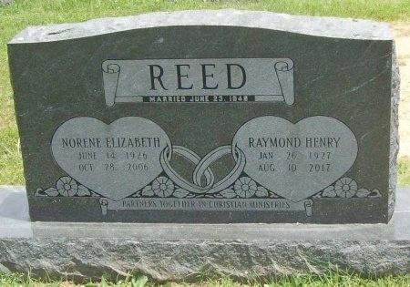 REED, NORENE ELIZABETH - Washington County, Arkansas | NORENE ELIZABETH REED - Arkansas Gravestone Photos