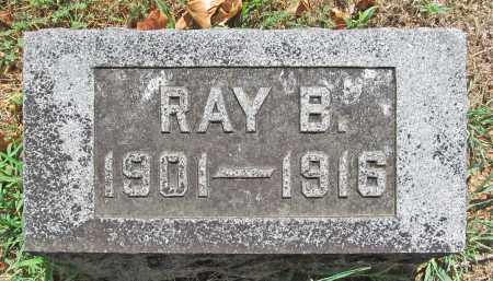 REED, RAY B - Washington County, Arkansas | RAY B REED - Arkansas Gravestone Photos