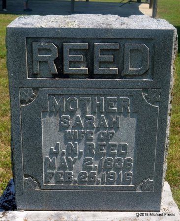 REED, SARAH - Washington County, Arkansas | SARAH REED - Arkansas Gravestone Photos