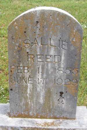 REED, SALLIE - Washington County, Arkansas | SALLIE REED - Arkansas Gravestone Photos