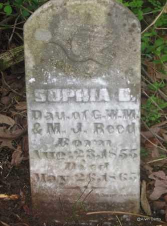 REED, SOPHIA B - Washington County, Arkansas | SOPHIA B REED - Arkansas Gravestone Photos