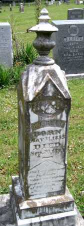 REED, THOMAS FRANKLIN - Washington County, Arkansas | THOMAS FRANKLIN REED - Arkansas Gravestone Photos