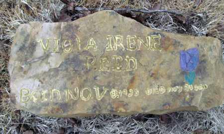 REED, VIOLA IRENE - Washington County, Arkansas | VIOLA IRENE REED - Arkansas Gravestone Photos