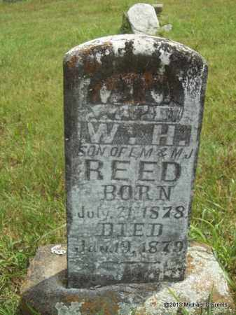 REED, W H - Washington County, Arkansas | W H REED - Arkansas Gravestone Photos