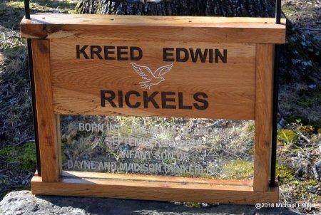 RICKELS, KREED EDWIN - Washington County, Arkansas | KREED EDWIN RICKELS - Arkansas Gravestone Photos
