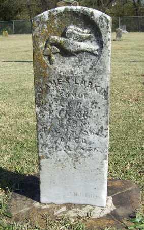 BAKER, JAMES LARKIN - Washington County, Arkansas   JAMES LARKIN BAKER - Arkansas Gravestone Photos