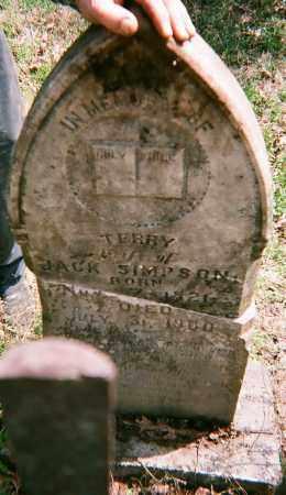 SIMPSON, TERRY - Washington County, Arkansas   TERRY SIMPSON - Arkansas Gravestone Photos