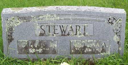 STEWART, MILLISSA AGNES - Washington County, Arkansas | MILLISSA AGNES STEWART - Arkansas Gravestone Photos