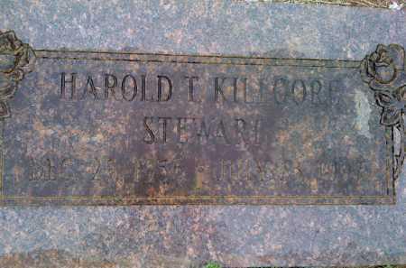 STEWART, HAROLD KILLGORE - Washington County, Arkansas | HAROLD KILLGORE STEWART - Arkansas Gravestone Photos