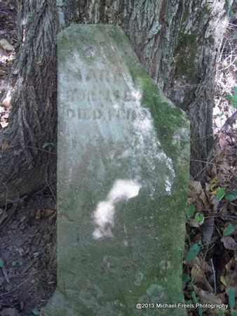 WALKER, MARY A - Washington County, Arkansas | MARY A WALKER - Arkansas Gravestone Photos