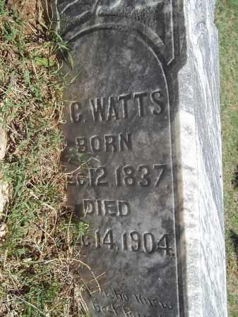 WATTS, W C - Washington County, Arkansas | W C WATTS - Arkansas Gravestone Photos