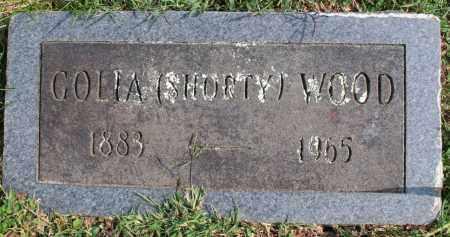 WOOD, GOLIA (SHORTY) - Washington County, Arkansas   GOLIA (SHORTY) WOOD - Arkansas Gravestone Photos