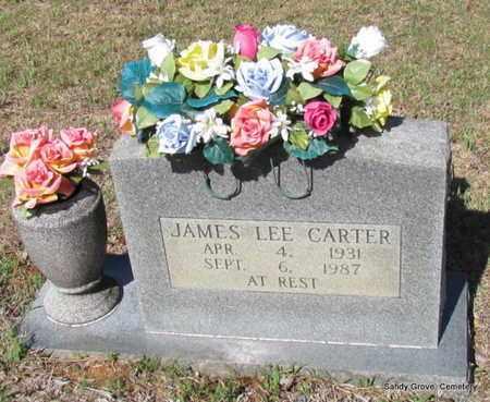 CARTER, JAMES LEE - White County, Arkansas   JAMES LEE CARTER - Arkansas Gravestone Photos