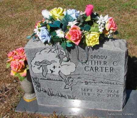 CARTER, LUTHER C - White County, Arkansas | LUTHER C CARTER - Arkansas Gravestone Photos