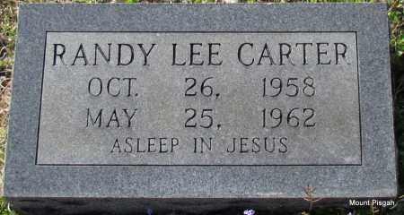 CARTER, RANDY LEE - White County, Arkansas | RANDY LEE CARTER - Arkansas Gravestone Photos