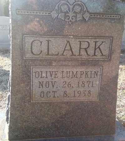 CLARK, OLIVE - White County, Arkansas | OLIVE CLARK - Arkansas Gravestone Photos