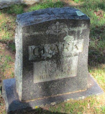 CLARK, WILLIAM A., DR. - White County, Arkansas   WILLIAM A., DR. CLARK - Arkansas Gravestone Photos
