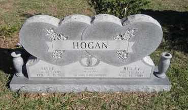 HOGAN, DALE - White County, Arkansas | DALE HOGAN - Arkansas Gravestone Photos